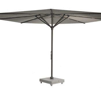borek parasol braga